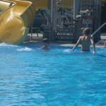 warszawskie półkolonie dla dzieci w wakacje
